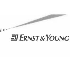 Ernst Young BW